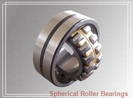95 mm x 170 mm x 43 mm  NSK 22219L12CAM spherical roller bearings