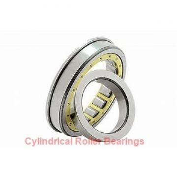 ISO BK1518 cylindrical roller bearings