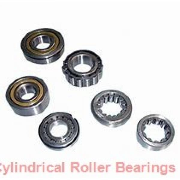 45 mm x 75 mm x 16 mm  ISB NU 1009 cylindrical roller bearings #1 image